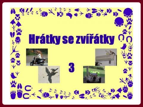 hratky_se_zviratky_3