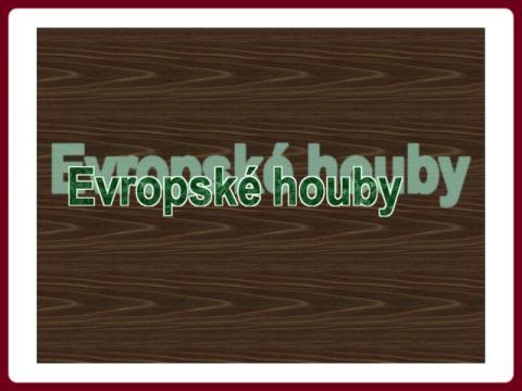 krasy_lesa_-_evropske_houby_cz