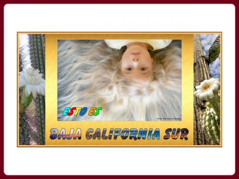 mexiko_baja_california_sur_-_steve_lalo