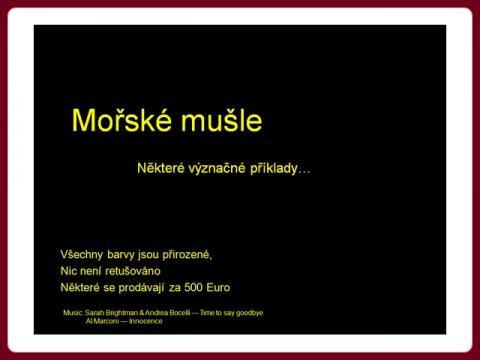 morske_musle