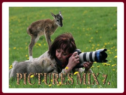 pictures_mix_-_ildy_7