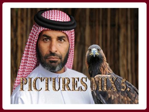 pictures_mix_-_ildy_5