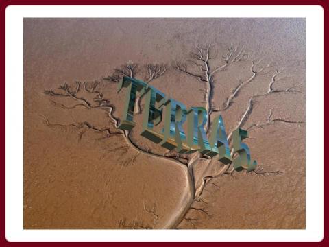 terra_-_ildy_5