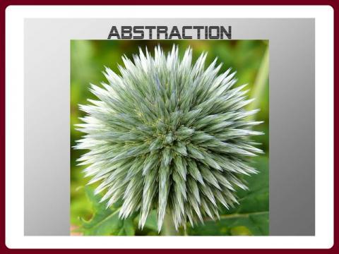 abstraction_-_mireille