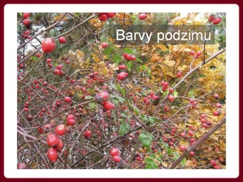 barvy_podzimu