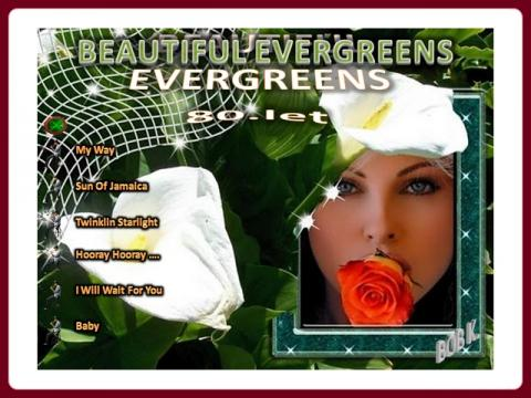 beautiful_evergreens_80_let