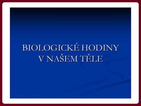 biologicke_hodiny_-_magda
