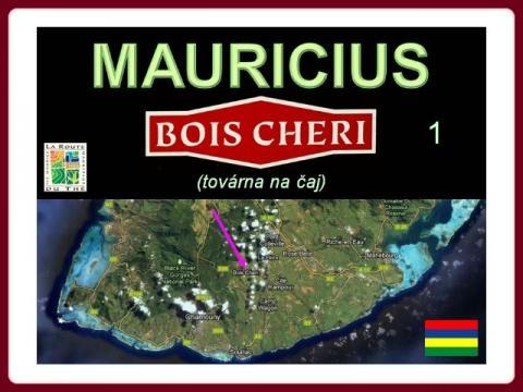 bois_cheri_1_-_tovarna_na_caj_2012