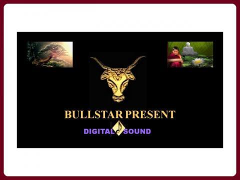 buddha_&_bonsai_-_bullstar
