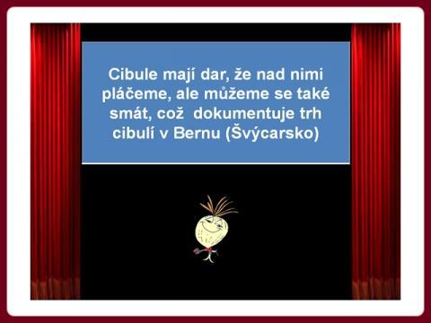 cibulovy_trh_v bernu_-_stanislav
