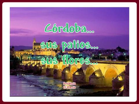 cordoba_-_sus_patios_sus_flores