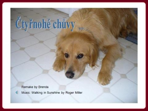 ctyrnohe_chuvy_-_babysitters_k_cz