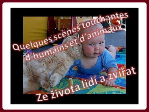 doteky_aneb_ze_zivota_lidi_a_zvirat