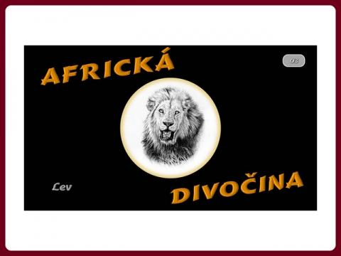 fauna_afriky_-_lev_-_steve