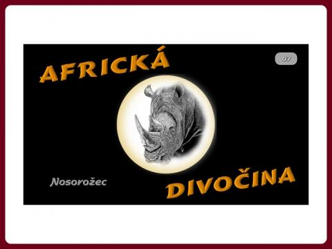 fauna_afriky_-_nosorozec _-_steve