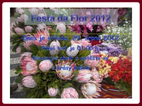 festa_da_flor_-_2012