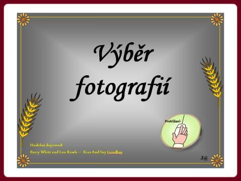 foto_vyber_fotografii_29