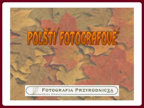 fotografie_polskych_fotografu