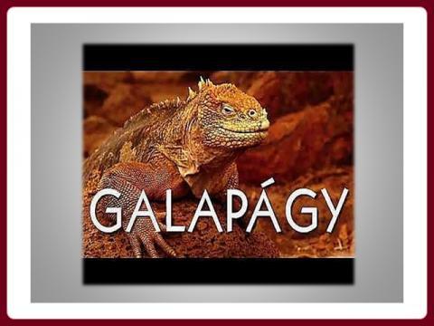 galapagy_-_yveta