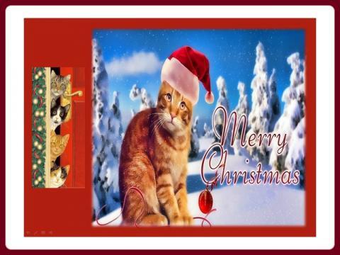 happy_new_year_2021_cats_-_yveta