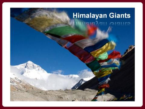 himalajsti_obri_-_himalayan_giants_-_olga_e