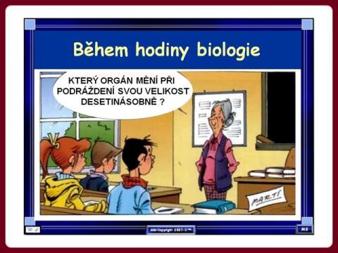hodina_biologie_organ_-_marc_s