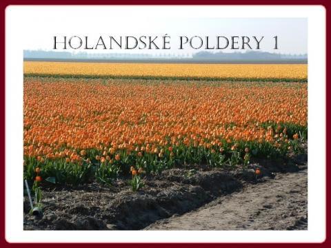 holand_polder_1