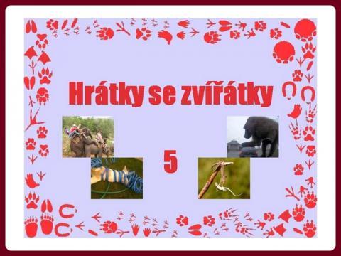 hratky_se_zviratky_5