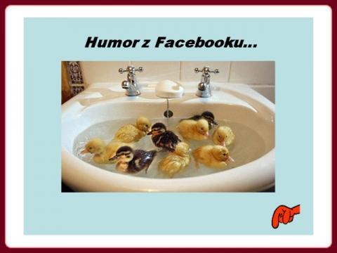 humor_z_facebooku