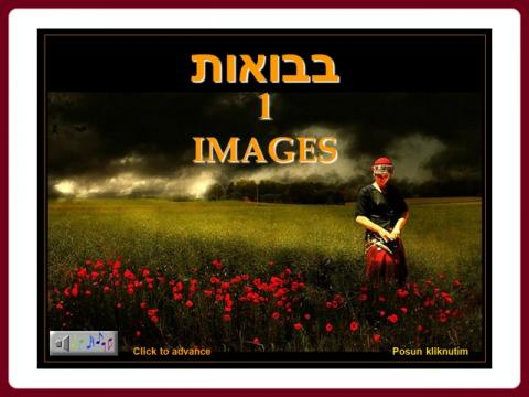 images_-_avior45_1