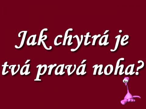 jak_chytra_je_tva_prava_noha