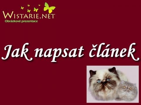 jak_napsat_clanek_wistarie