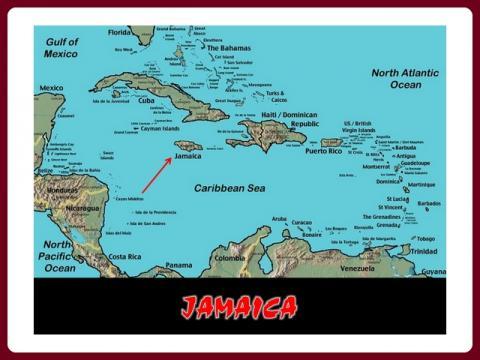 jamaica_-_snoekie