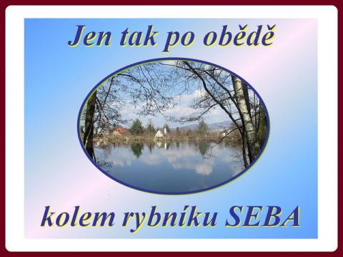 jarni_rybnik_seba_-_bohous