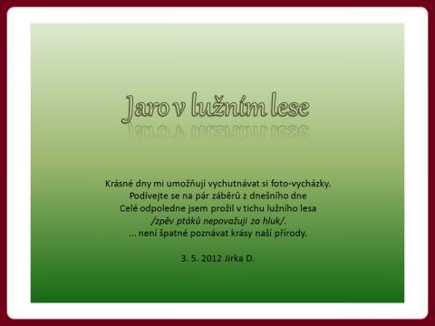 jaro_v_luznim_lese