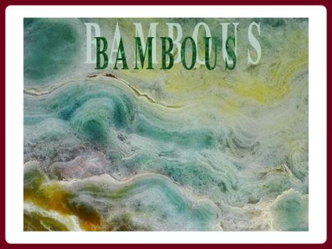 jl_bambous