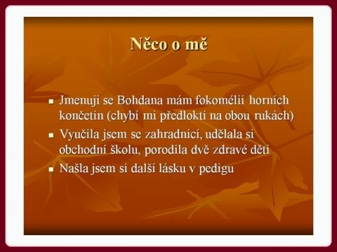 katalog_bohdana