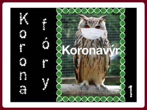 koronafory_mct_1