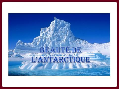 krasa_antarktidy_-_beaute_de_l_antarctique_-_mimi40