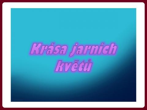 krasa_jarnich_kvetin_-_yveta
