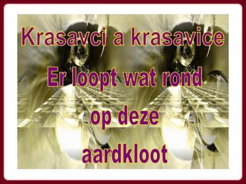 krasavci_a_krasavice_1
