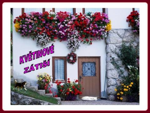 kvetinova_zatisi