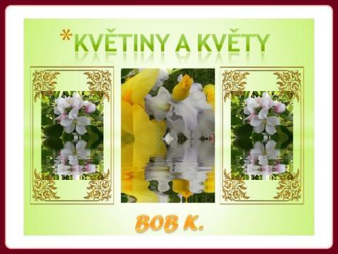 kvetiny_a_kvety_-_bobk