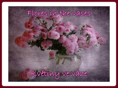 kvetiny_ve_vaze_-_flores_in_the_vases_-_ali