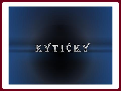kyticky_yveta