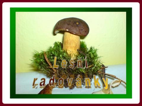 lesni_radovanky