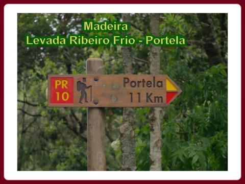 madeira_-_levada_ribeiro_frio_-_portela_2009