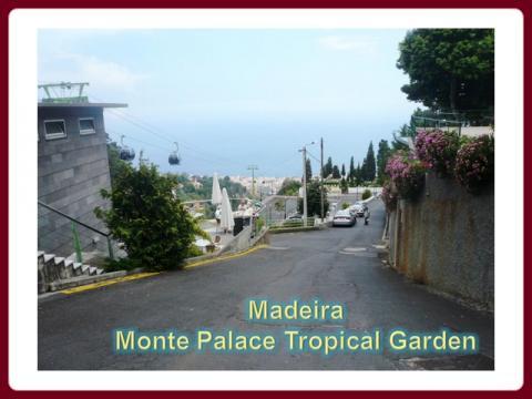 madeira_-_monte_palace_tropical_garden_2009