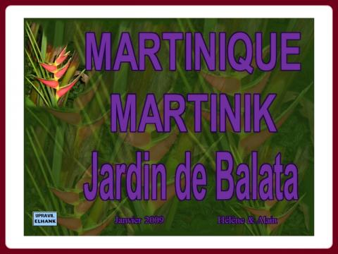 martinique_jardin_de_balata