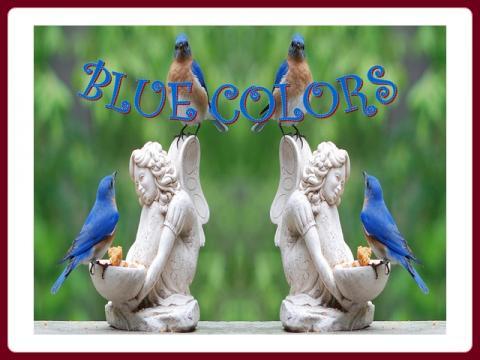 modra_barva_blue_colors_-_ildy